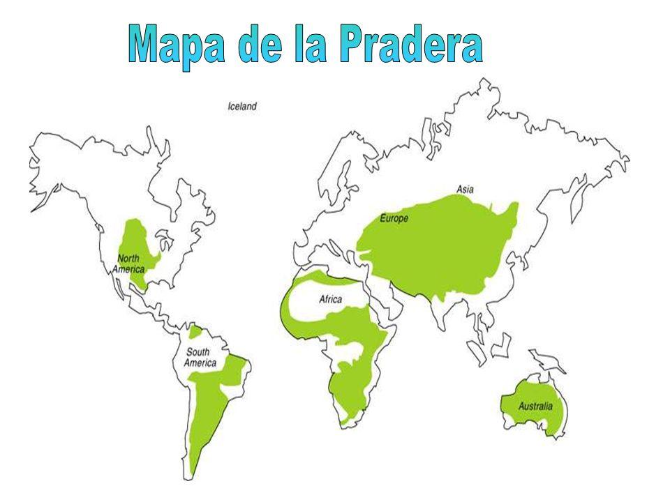 Mapa de la Pradera