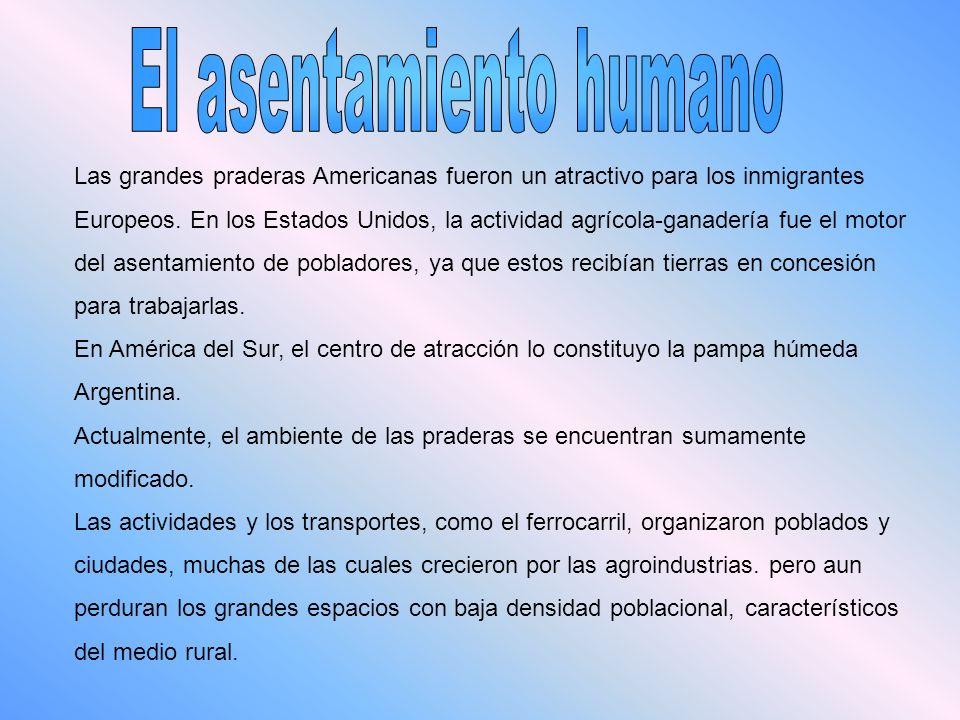 El asentamiento humano