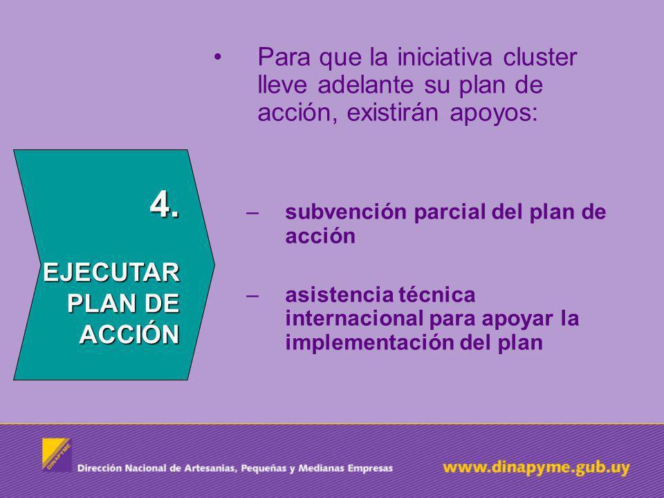 Para que la iniciativa cluster lleve adelante su plan de acción, existirán apoyos: