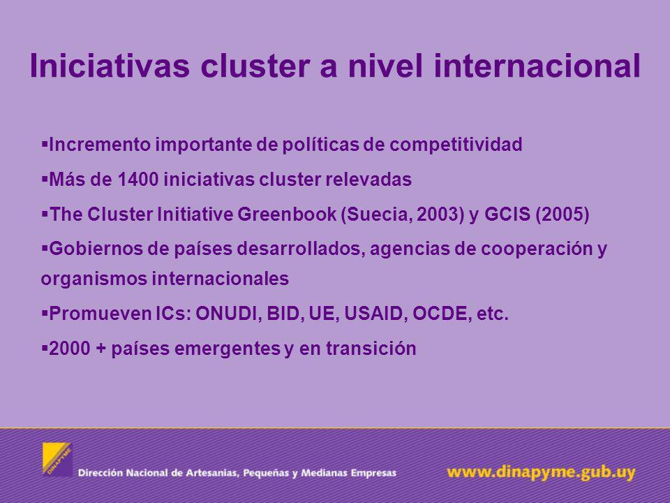 Iniciativas cluster a nivel internacional