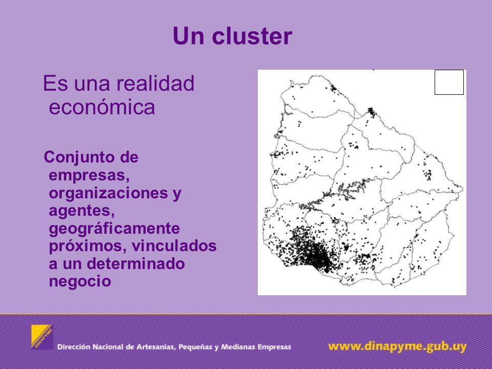 Un cluster Es una realidad económica
