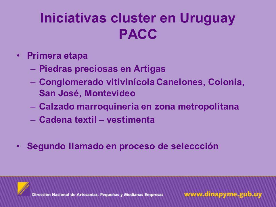 Iniciativas cluster en Uruguay PACC