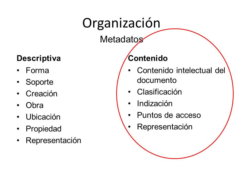 Organización Metadatos Descriptiva Contenido Forma Soporte Creación
