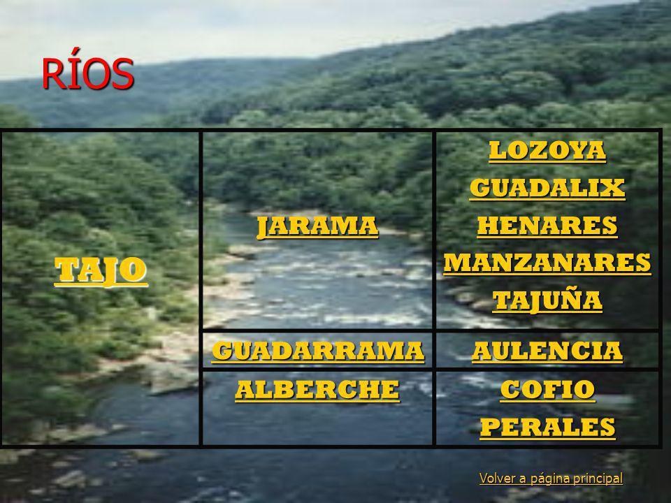 RÍOS TAJO JARAMA LOZOYA GUADALIX HENARES MANZANARES TAJUÑA GUADARRAMA