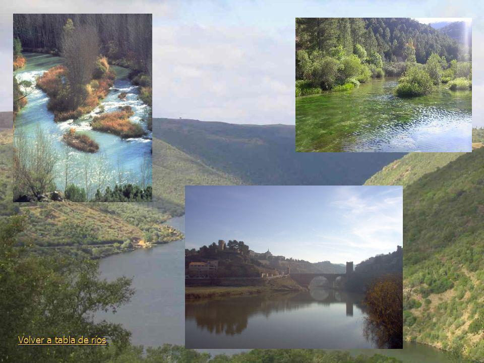 Volver a tabla de ríos