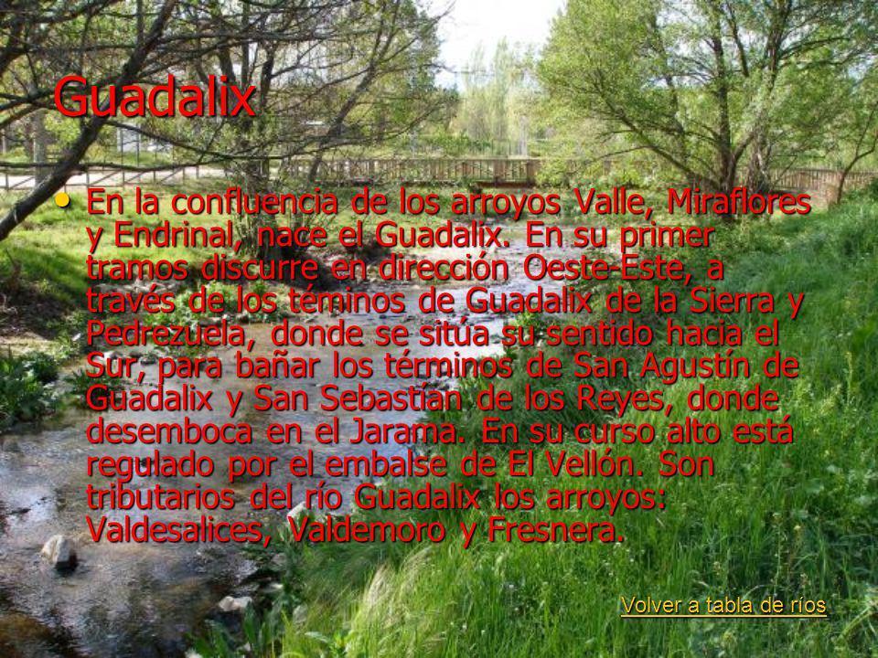 Guadalix