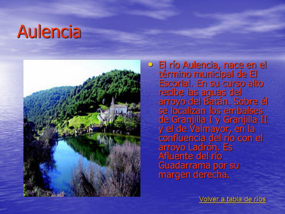 Aulencia