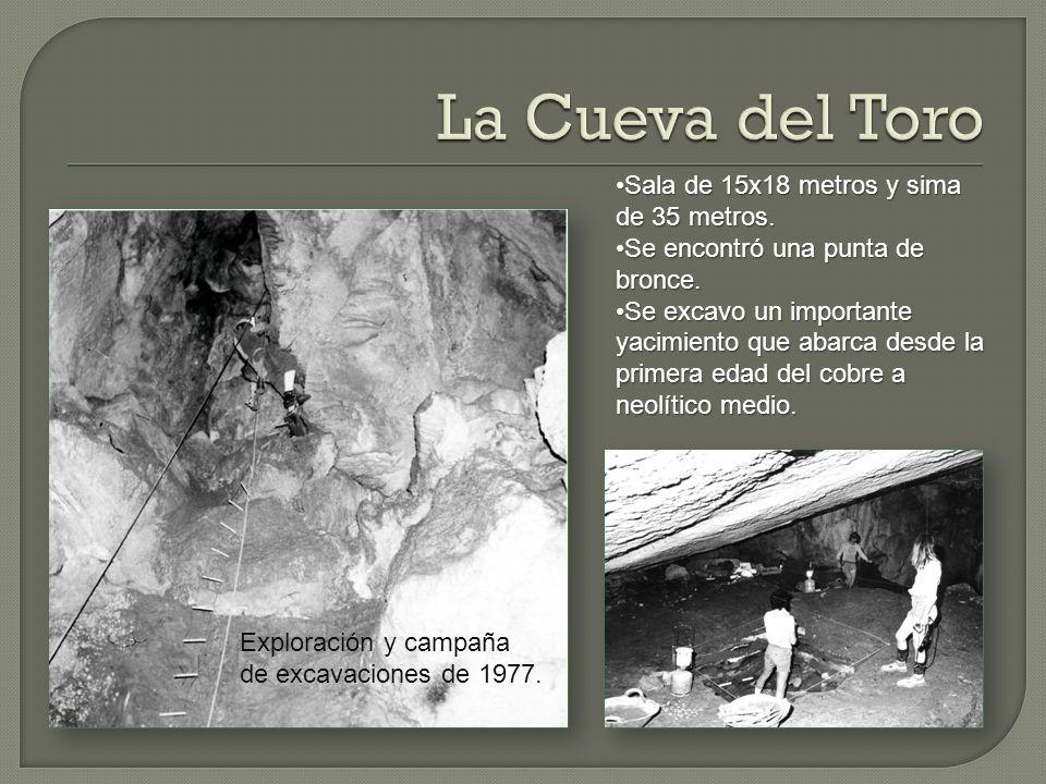 La Cueva del Toro Sala de 15x18 metros y sima de 35 metros.