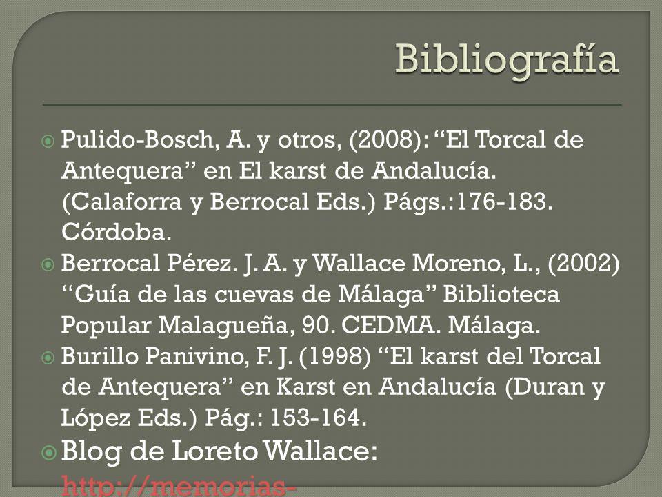 Bibliografía Pulido-Bosch, A. y otros, (2008): El Torcal de Antequera en El karst de Andalucía. (Calaforra y Berrocal Eds.) Págs.:176-183. Córdoba.