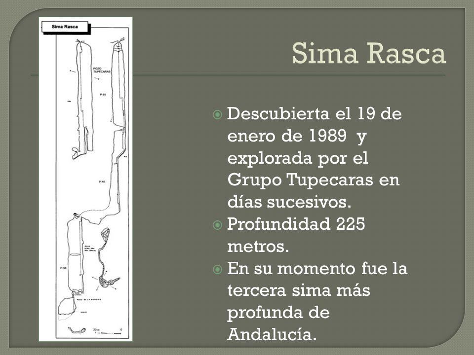Sima Rasca Descubierta el 19 de enero de 1989 y explorada por el Grupo Tupecaras en días sucesivos.