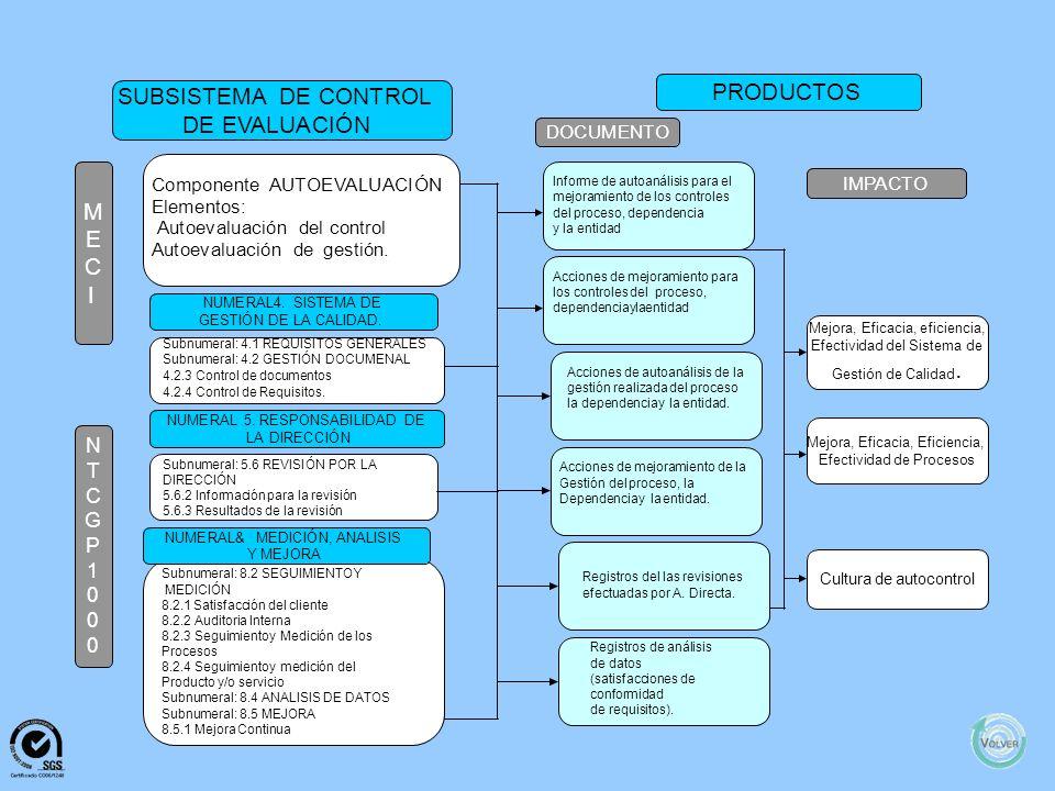 . PRODUCTOS SUBSISTEMA DE CONTROL DE EVALUACIÓN M E C I N T C G P 1