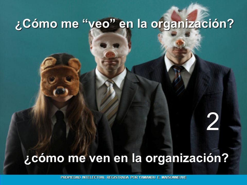 ¿Cómo me veo en la organización ¿cómo me ven en la organización