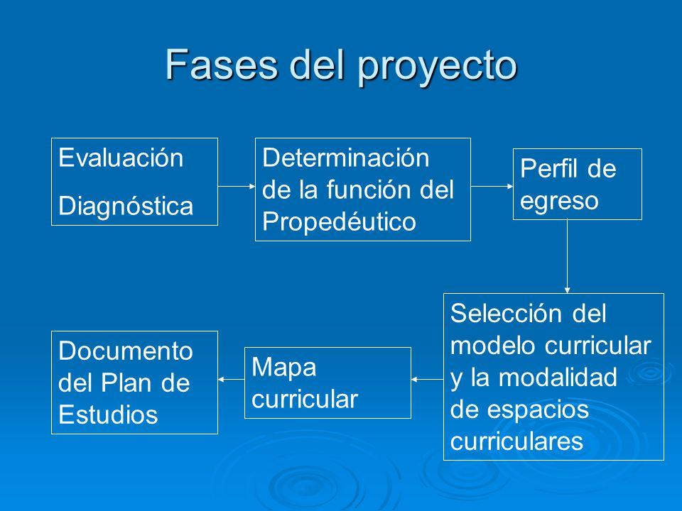Fases del proyecto Evaluación Diagnóstica