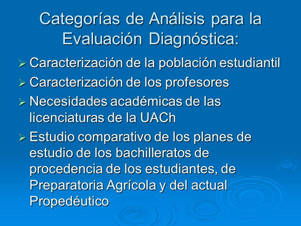 Categorías de Análisis para la Evaluación Diagnóstica: