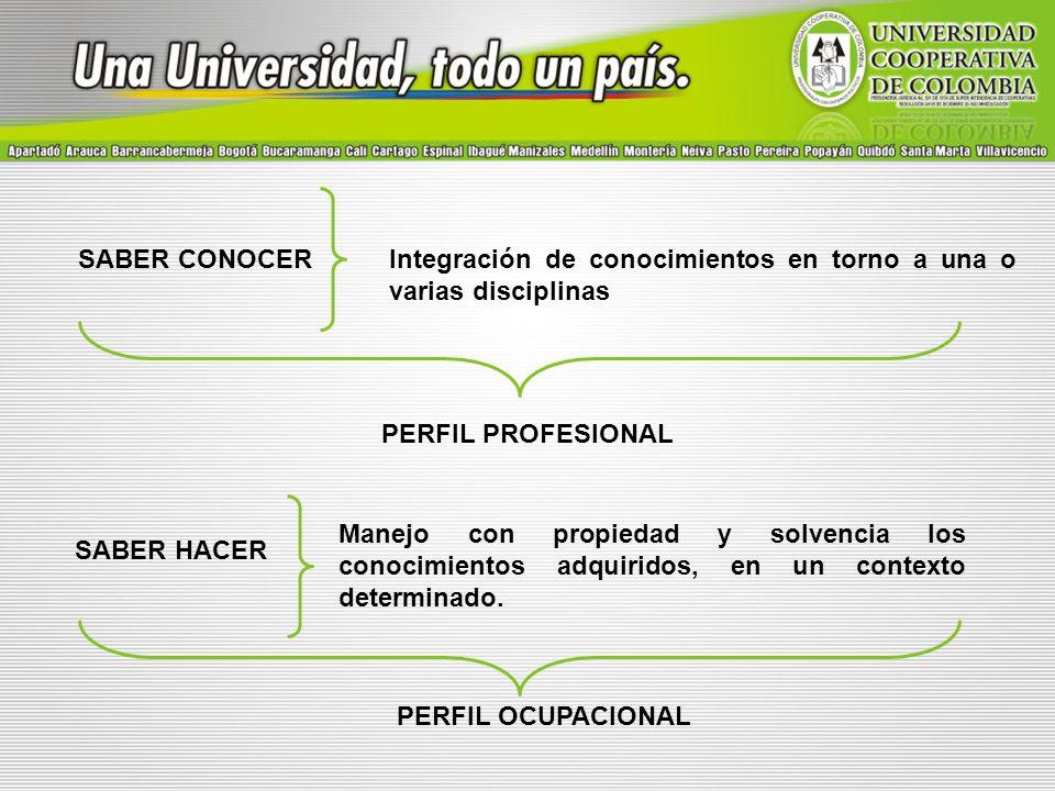 SABER CONOCER Integración de conocimientos en torno a una o varias disciplinas. PERFIL PROFESIONAL.
