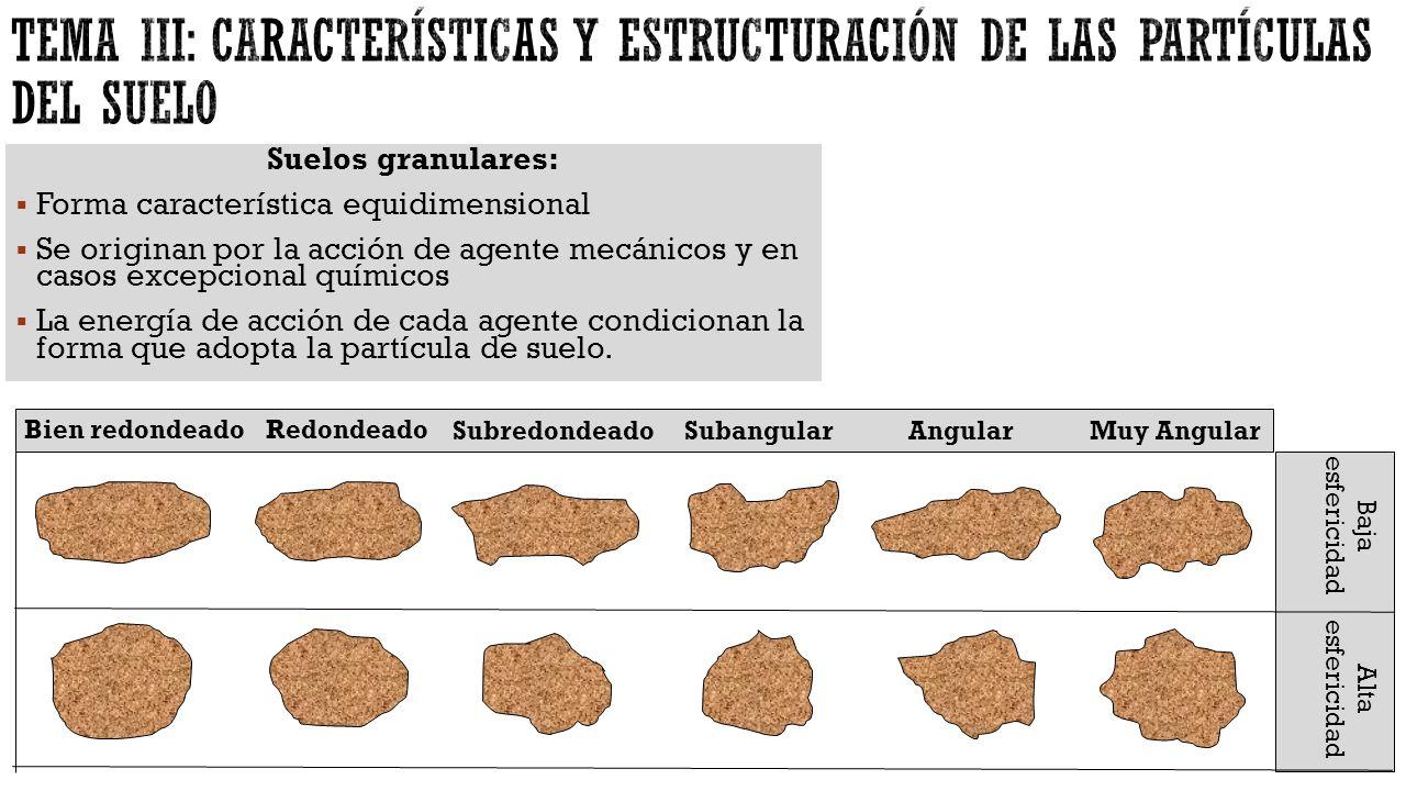 tema iii caracter sticas y estructuraci n de las On formas del suelo