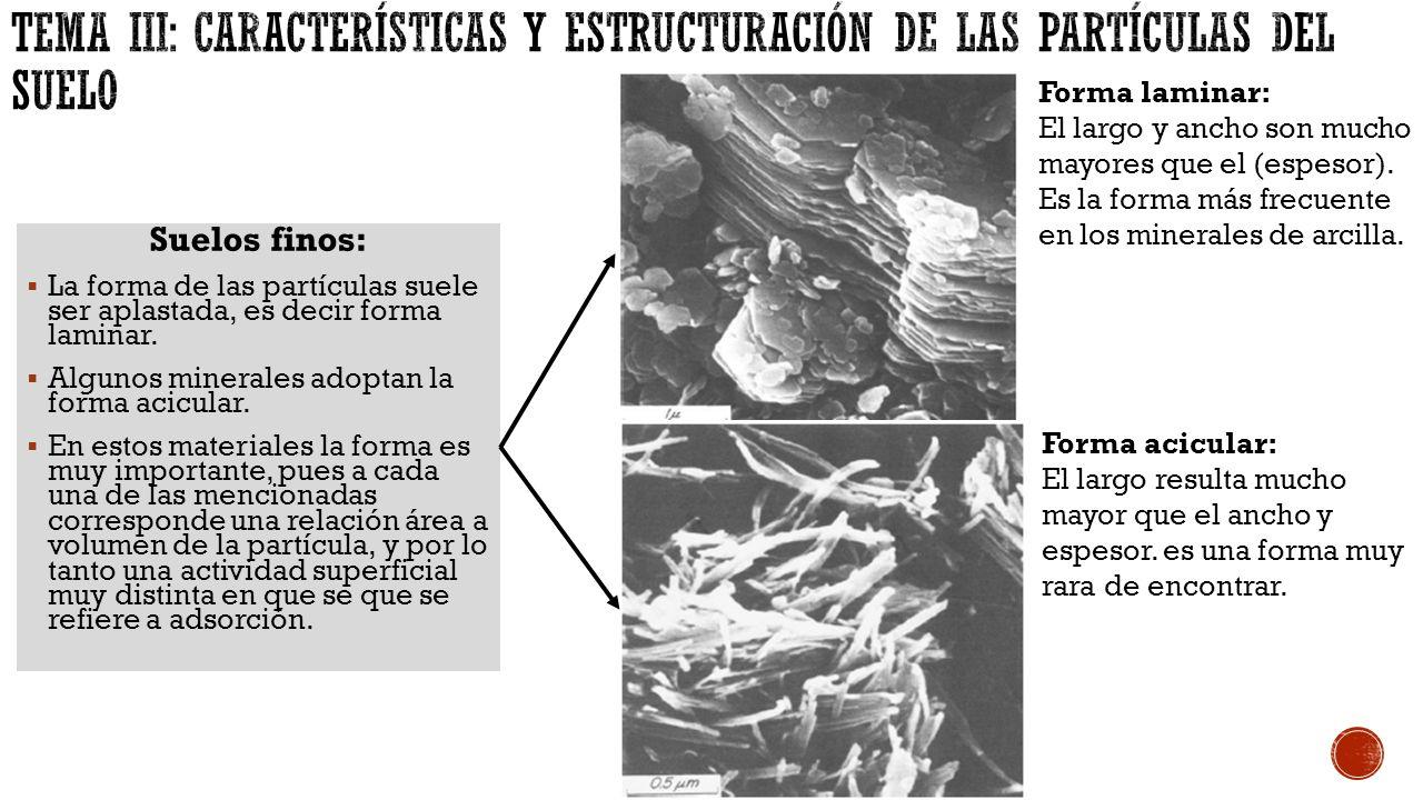Tema iii caracter sticas y estructuraci n de las for Caracteristicas de los suelos