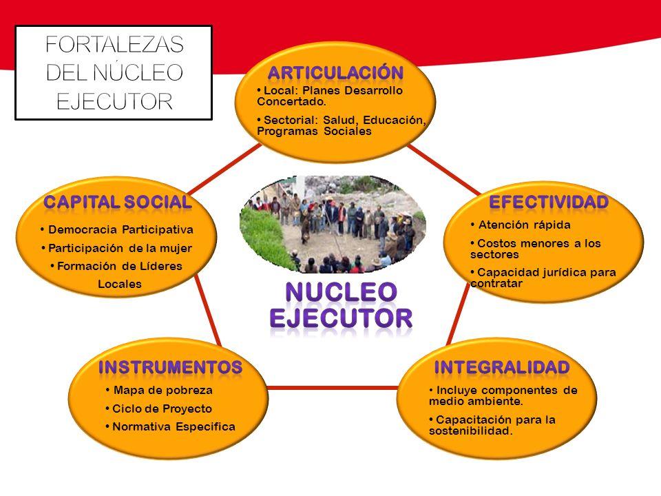 NUCLEO EJECUTOR FORTALEZAS DEL NÚCLEO EJECUTOR CAPITAL SOCIAL
