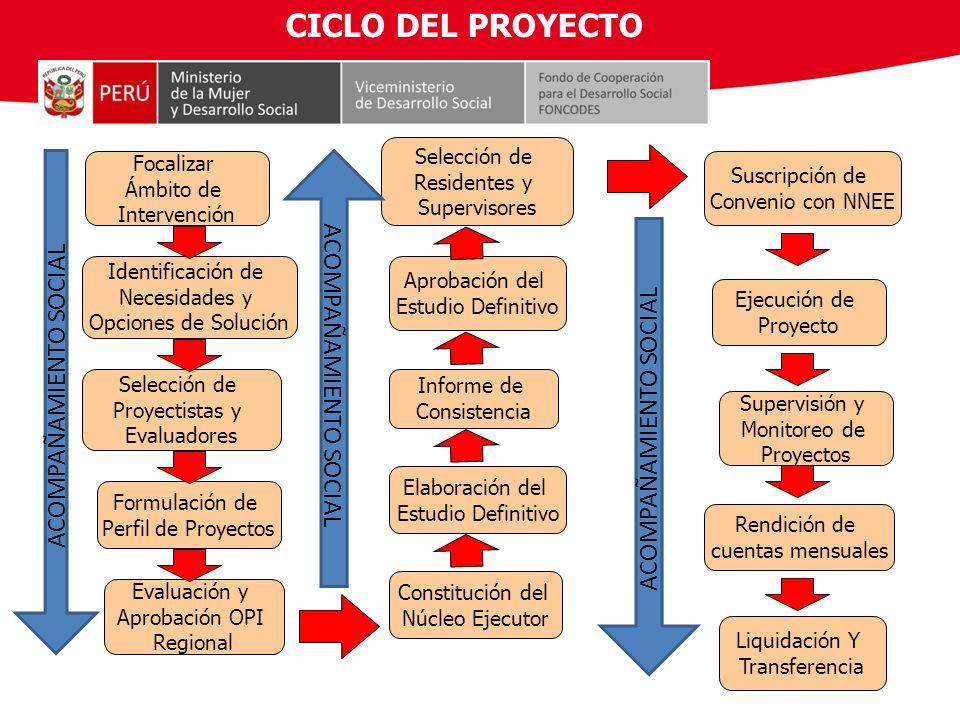 CICLO DEL PROYECTO ACOMPAÑAMIENTO SOCIAL ACOMPAÑAMIENTO SOCIAL