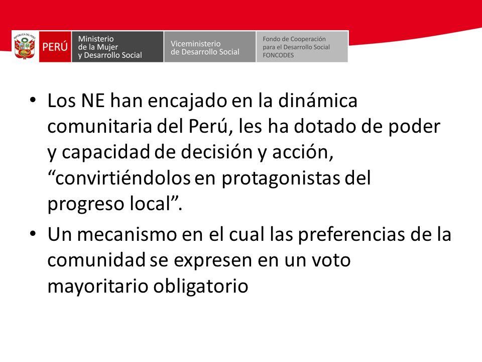 Los NE han encajado en la dinámica comunitaria del Perú, les ha dotado de poder y capacidad de decisión y acción, convirtiéndolos en protagonistas del progreso local .