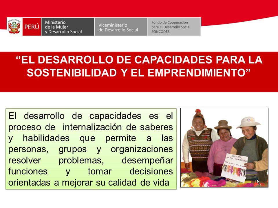 EL DESARROLLO DE CAPACIDADES PARA LA SOSTENIBILIDAD Y EL EMPRENDIMIENTO