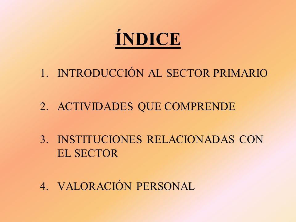ÍNDICE INTRODUCCIÓN AL SECTOR PRIMARIO ACTIVIDADES QUE COMPRENDE