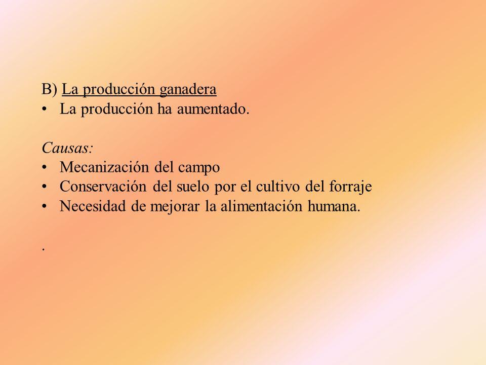 B) La producción ganadera