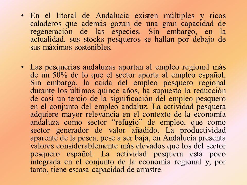 En el litoral de Andalucía existen múltiples y ricos caladeros que además gozan de una gran capacidad de regeneración de las especies. Sin embargo, en la actualidad, sus stocks pesqueros se hallan por debajo de sus máximos sostenibles.