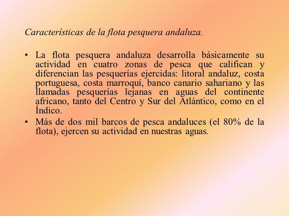 Características de la flota pesquera andaluza.