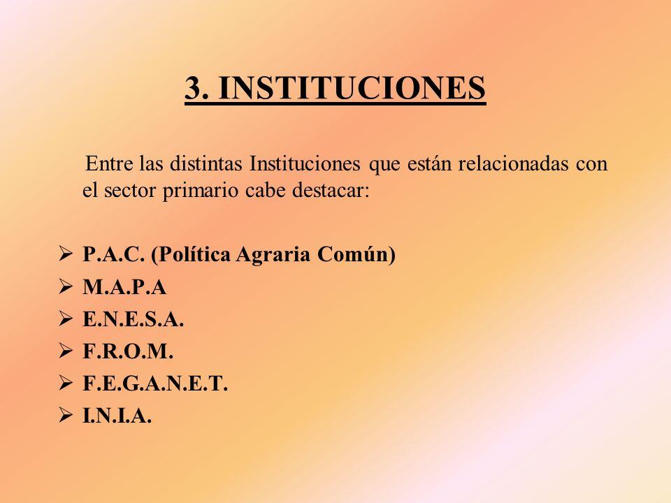 3. INSTITUCIONES Entre las distintas Instituciones que están relacionadas con el sector primario cabe destacar: