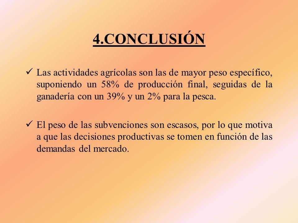 4.CONCLUSIÓN