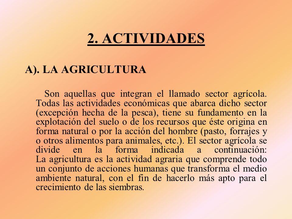 2. ACTIVIDADES A). LA AGRICULTURA