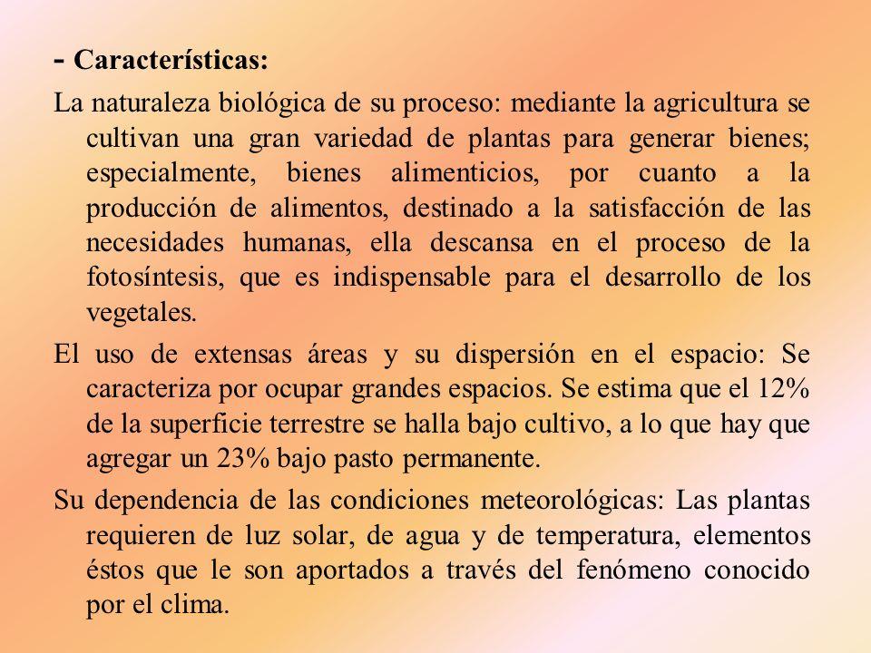 - Características: