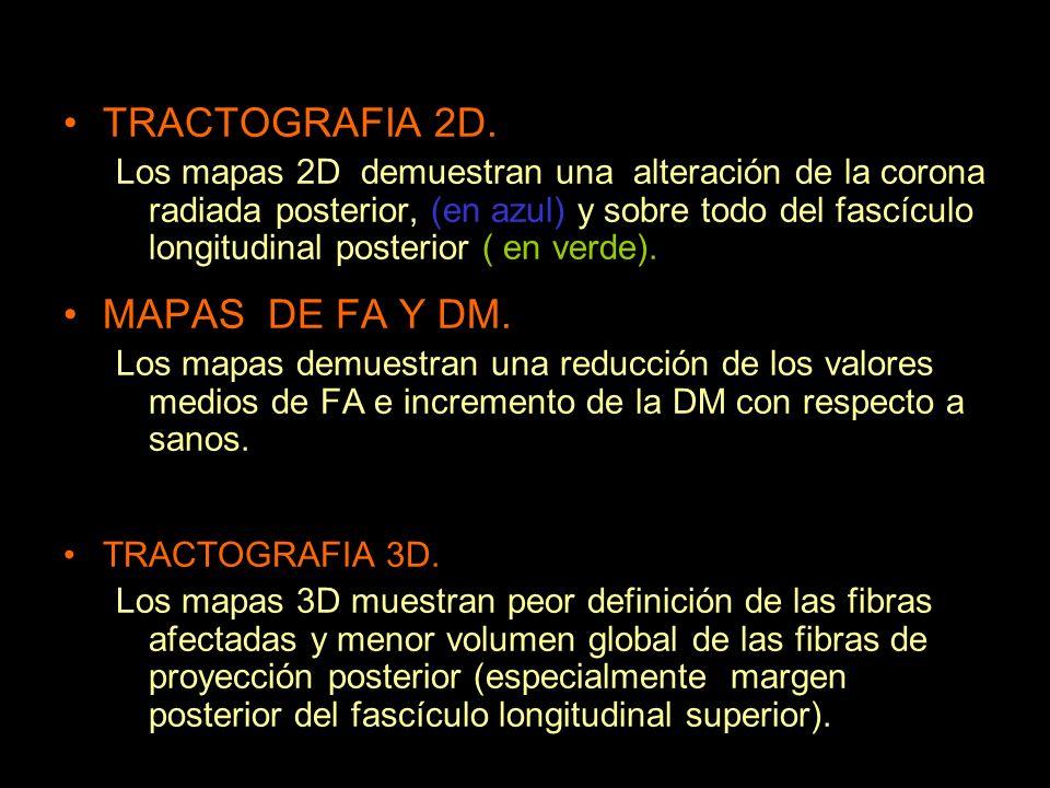 TRACTOGRAFIA 2D. MAPAS DE FA Y DM.