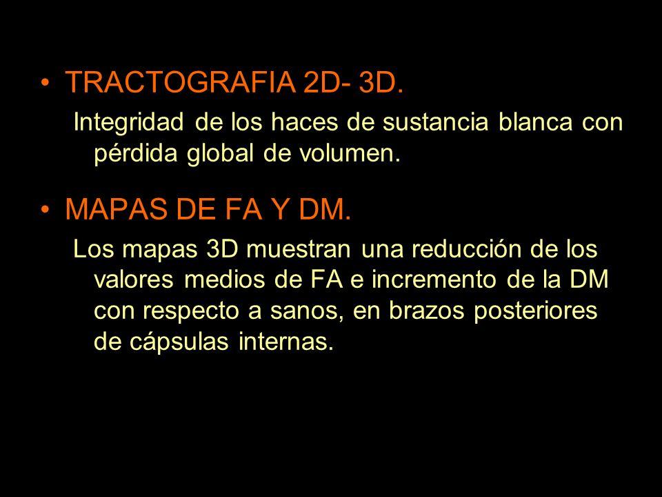 TRACTOGRAFIA 2D- 3D. MAPAS DE FA Y DM.