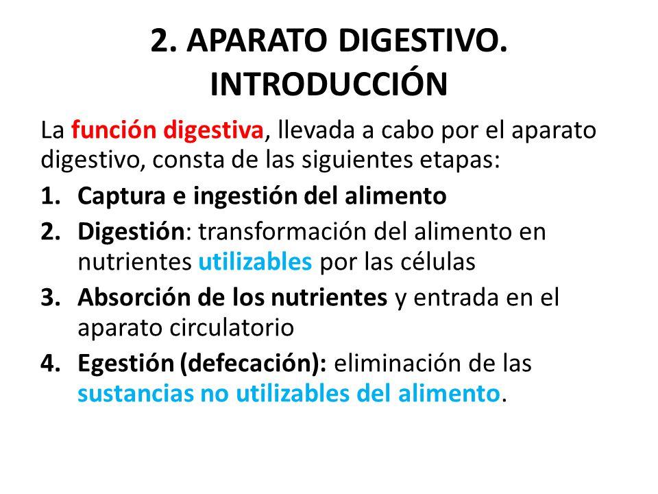 2. APARATO DIGESTIVO. INTRODUCCIÓN