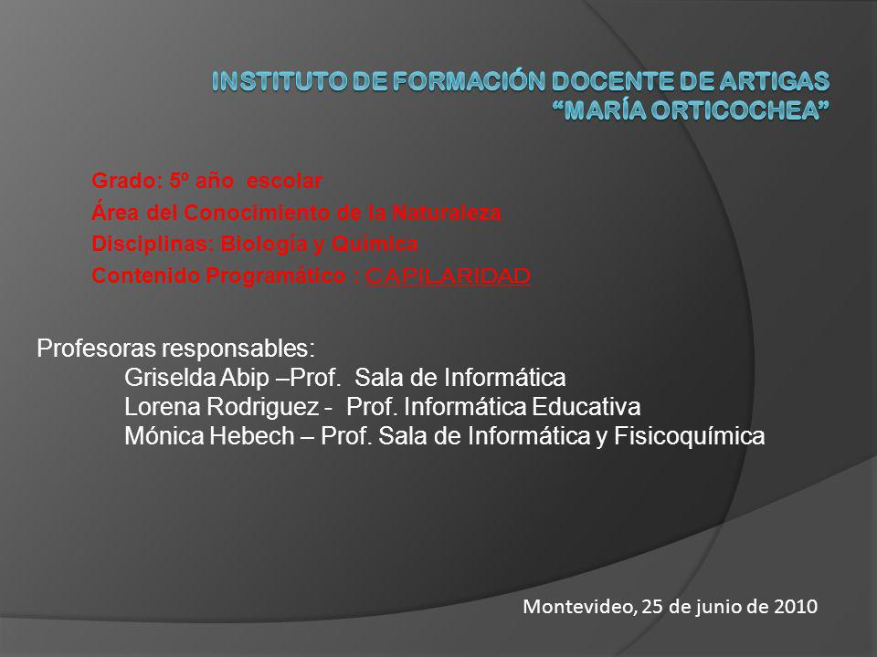 INSTITUTO DE FORMACIÓN DOCENTE DE ARTIGAS María Orticochea
