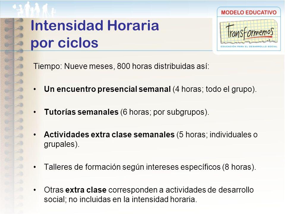 Intensidad Horaria por ciclos
