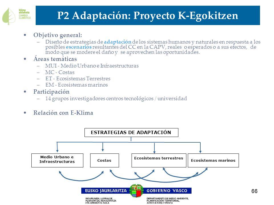P2 Adaptación: Proyecto K-Egokitzen