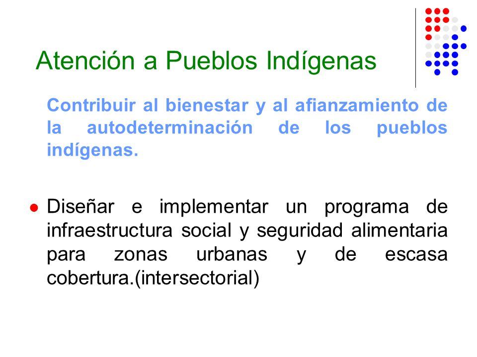 Atención a Pueblos Indígenas