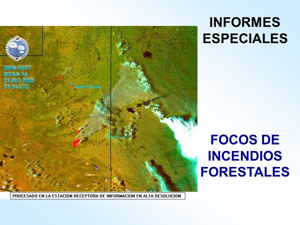 FOCOS DE INCENDIOS FORESTALES