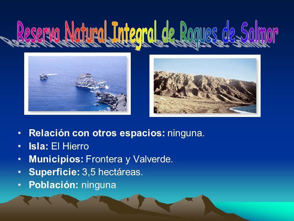 Reserva Natural Integral de Roques de Salmor