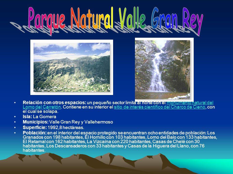 Parque Natural Valle Gran Rey