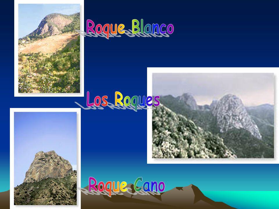 Roque Blanco Los Roques Roque Cano