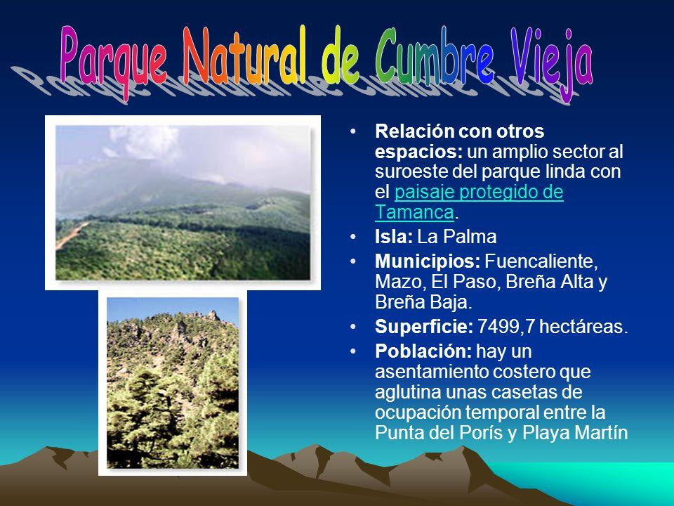 Parque Natural de Cumbre Vieja