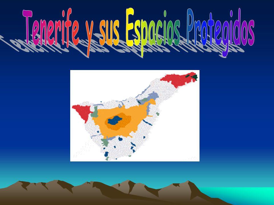 Tenerife y sus Espacios Protegidos