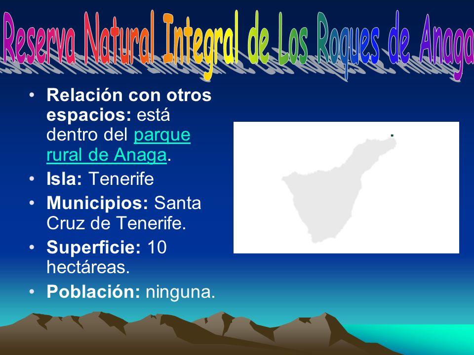 Reserva Natural Integral de Los Roques de Anaga