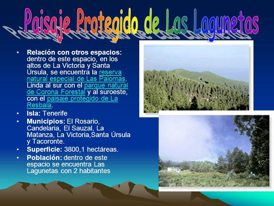 Paisaje Protegido de Las Lagunetas