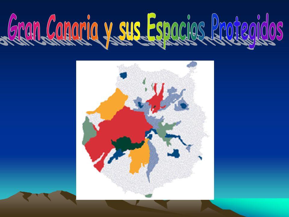 Gran Canaria y sus Espacios Protegidos
