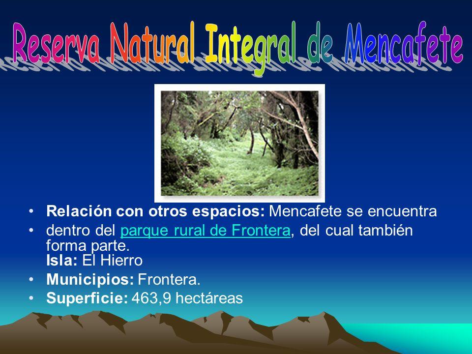 Reserva Natural Integral de Mencafete